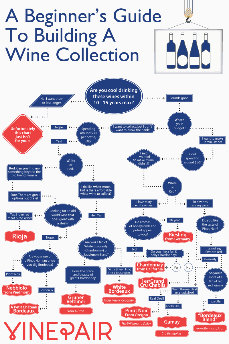 A Beginner's Guide To Building A Wine Collection