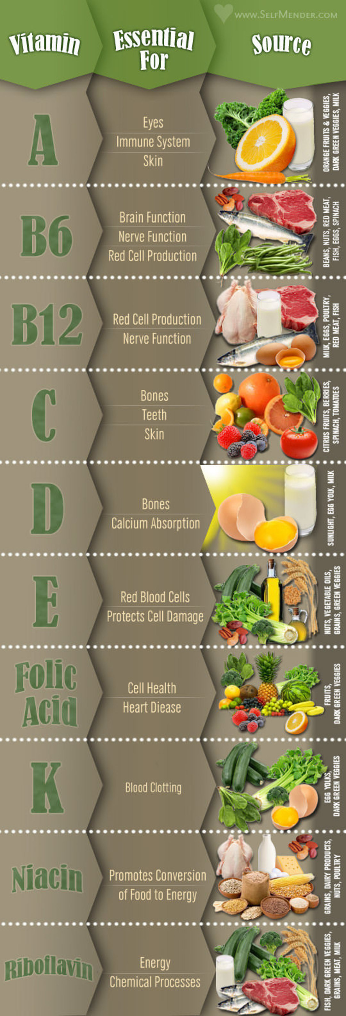 Guide To Essential Vitamins & Their Food Sources