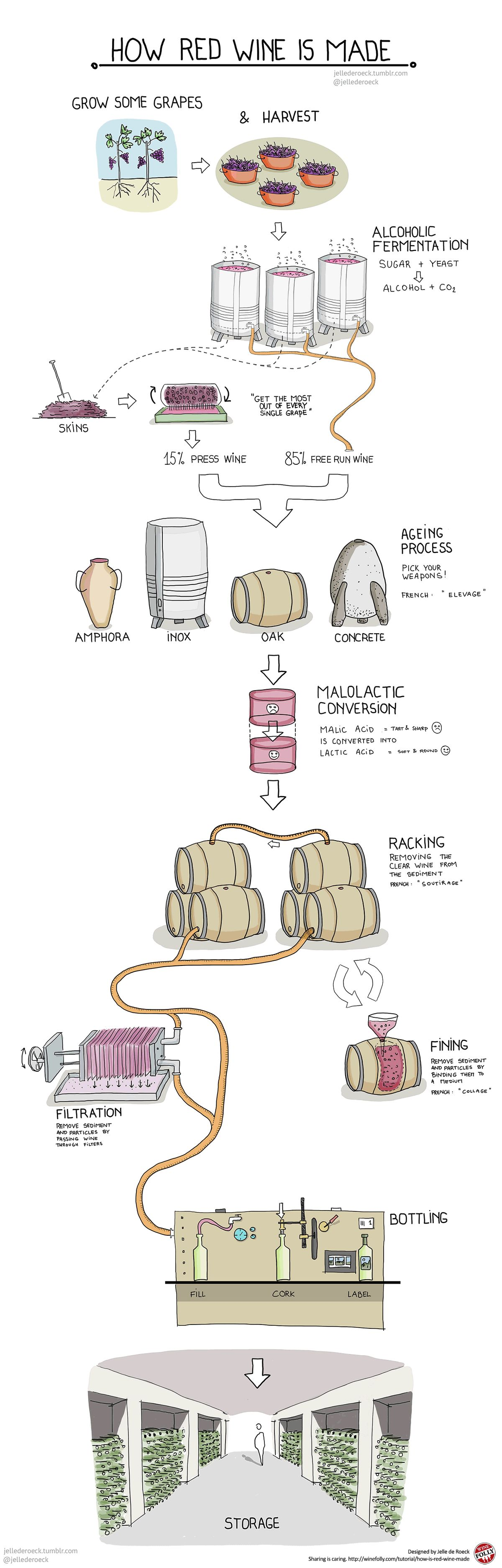 How Red Wine Is Made