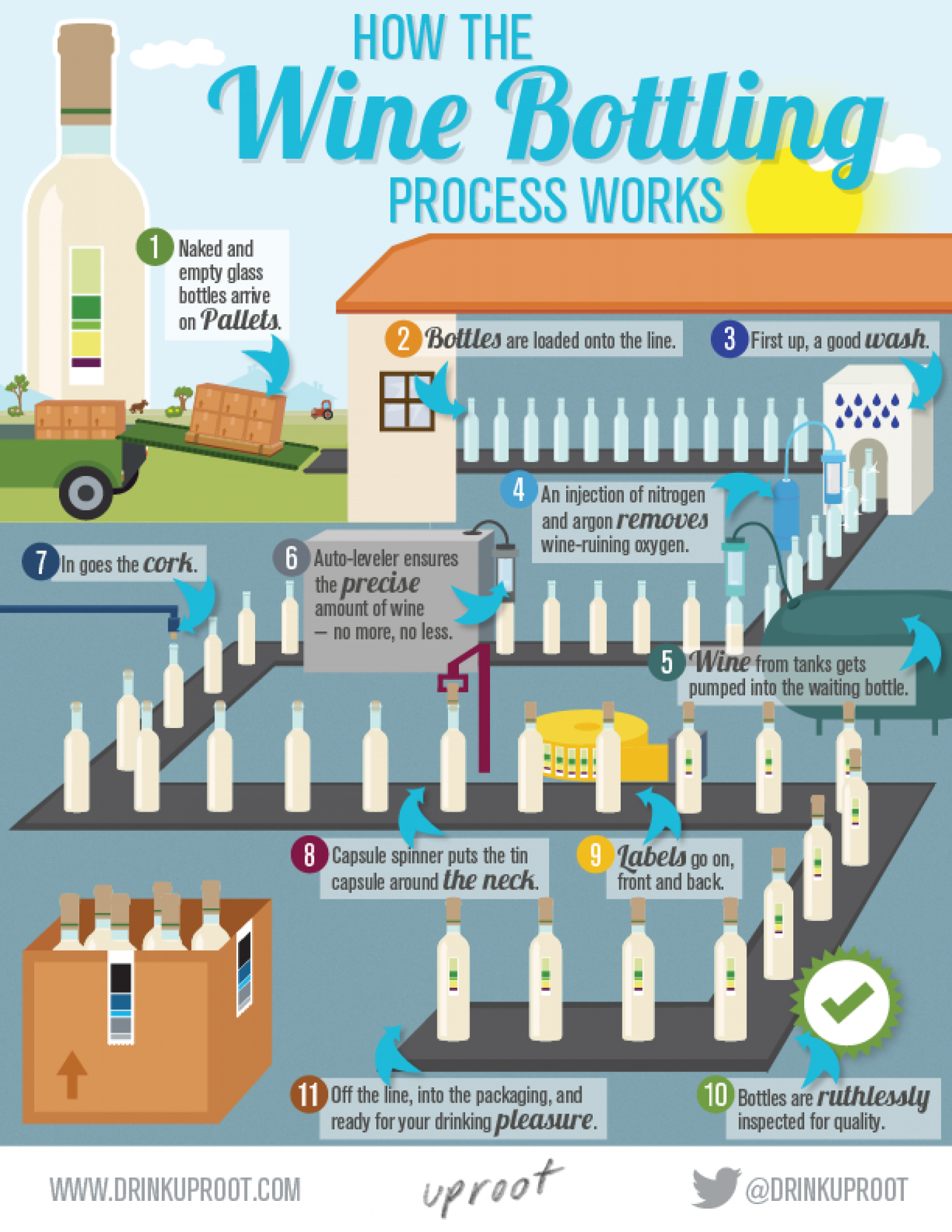 How The Wine Bottling Process Works