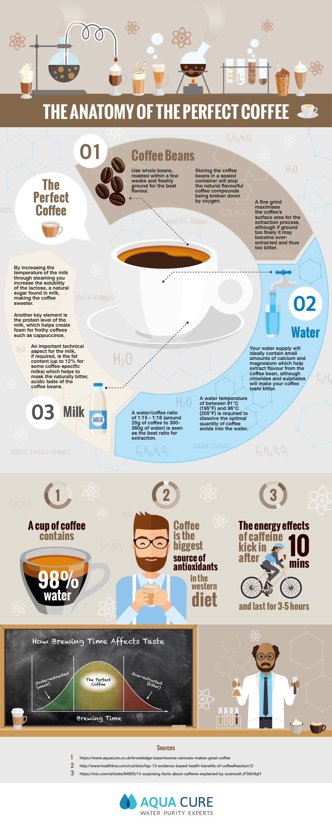 The Anatomy Of The Perfect Coffee