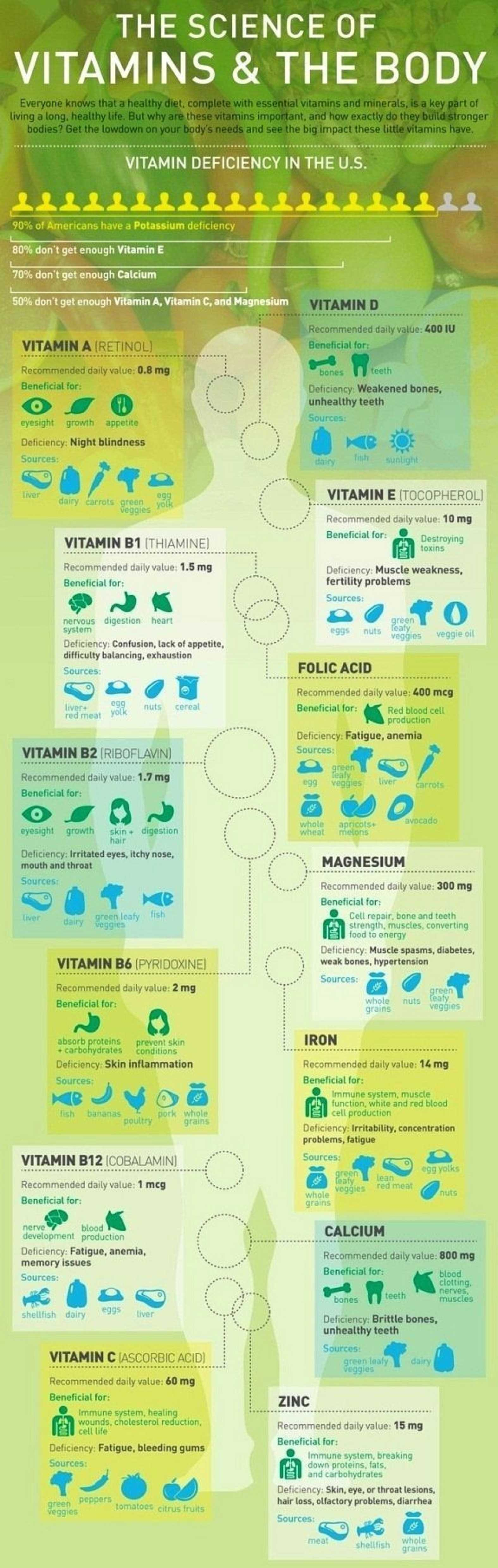 The Science Of Vitamins And The Body