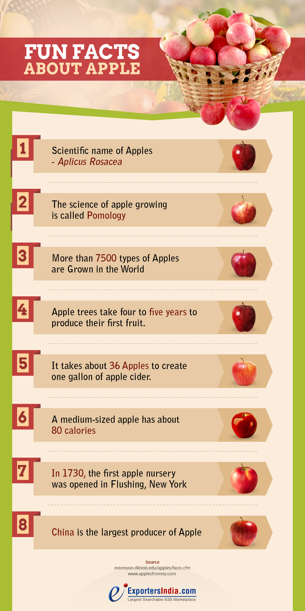 8 Fun Facts About Apple