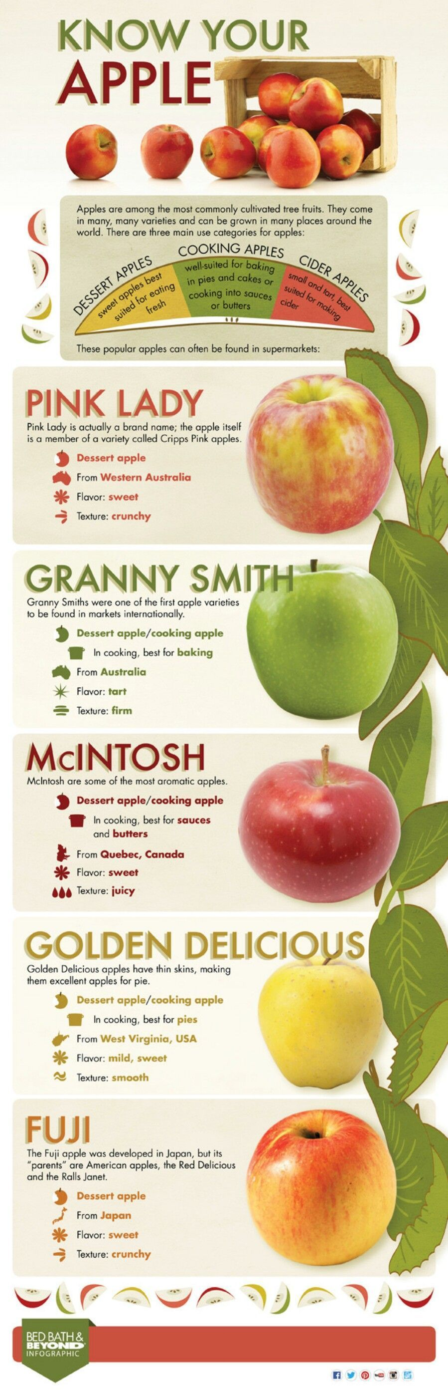 Know Your Apple