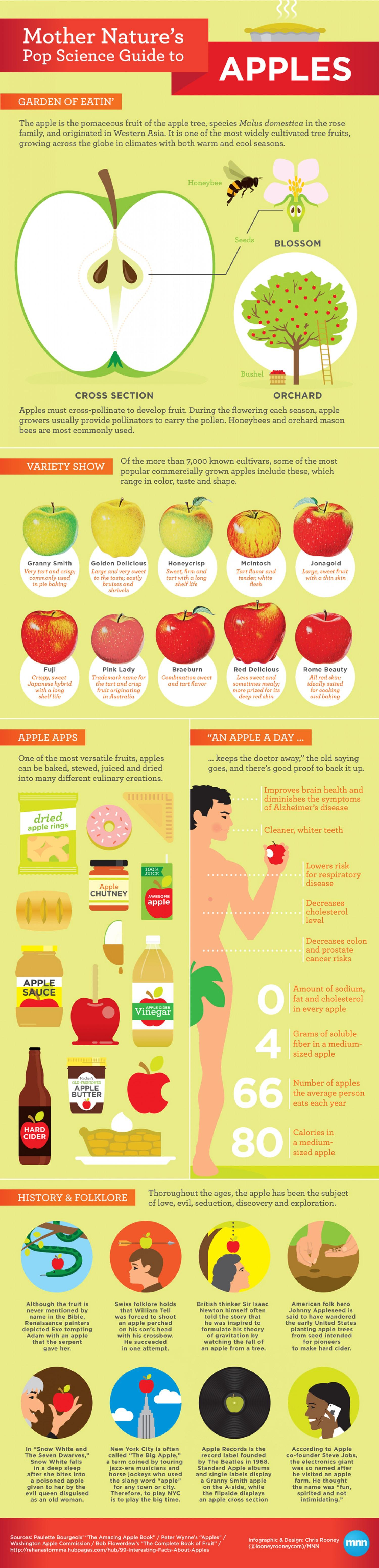 Mother Nature's Pop Science Guide to Apples