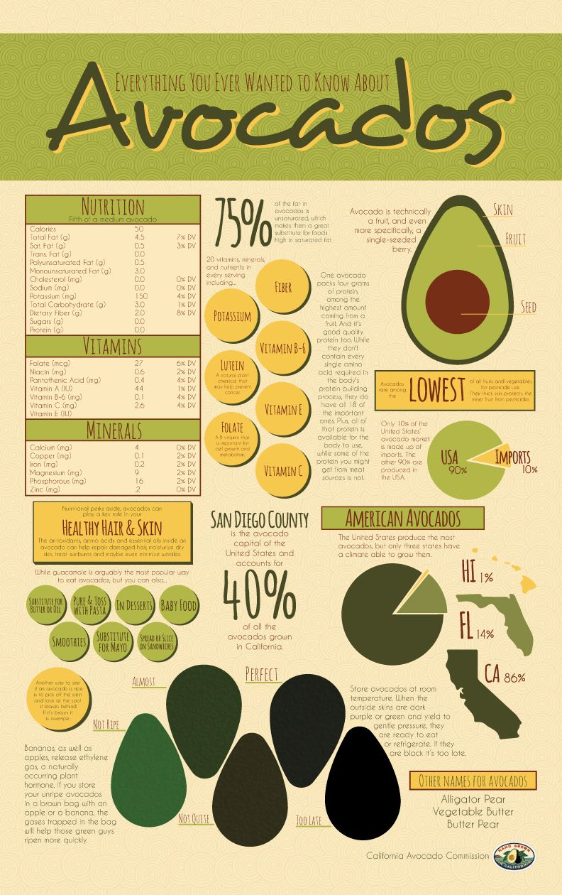 Everything You Ever Wanted To Know About Avocados