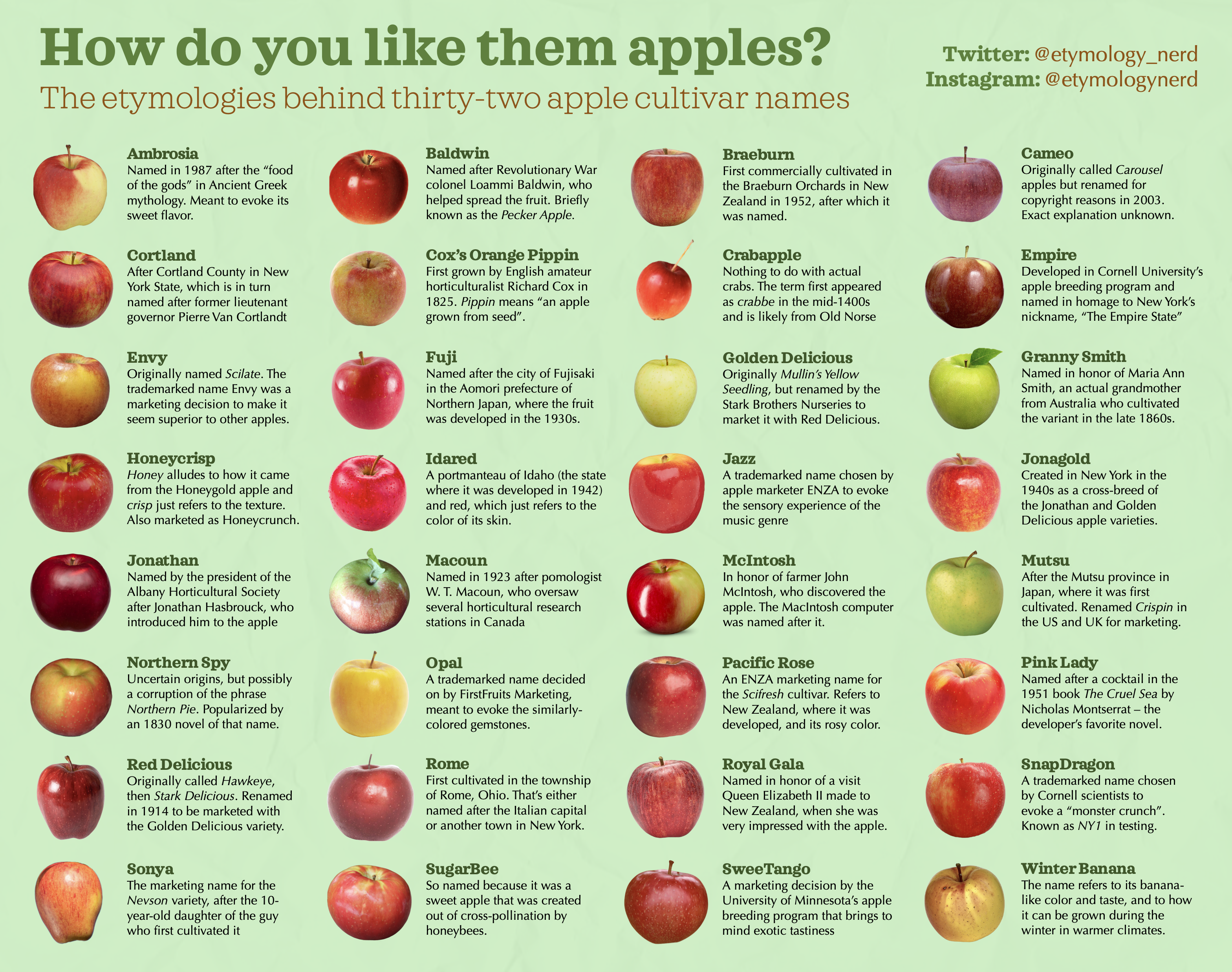 The Etymologies of 23 Apple Names