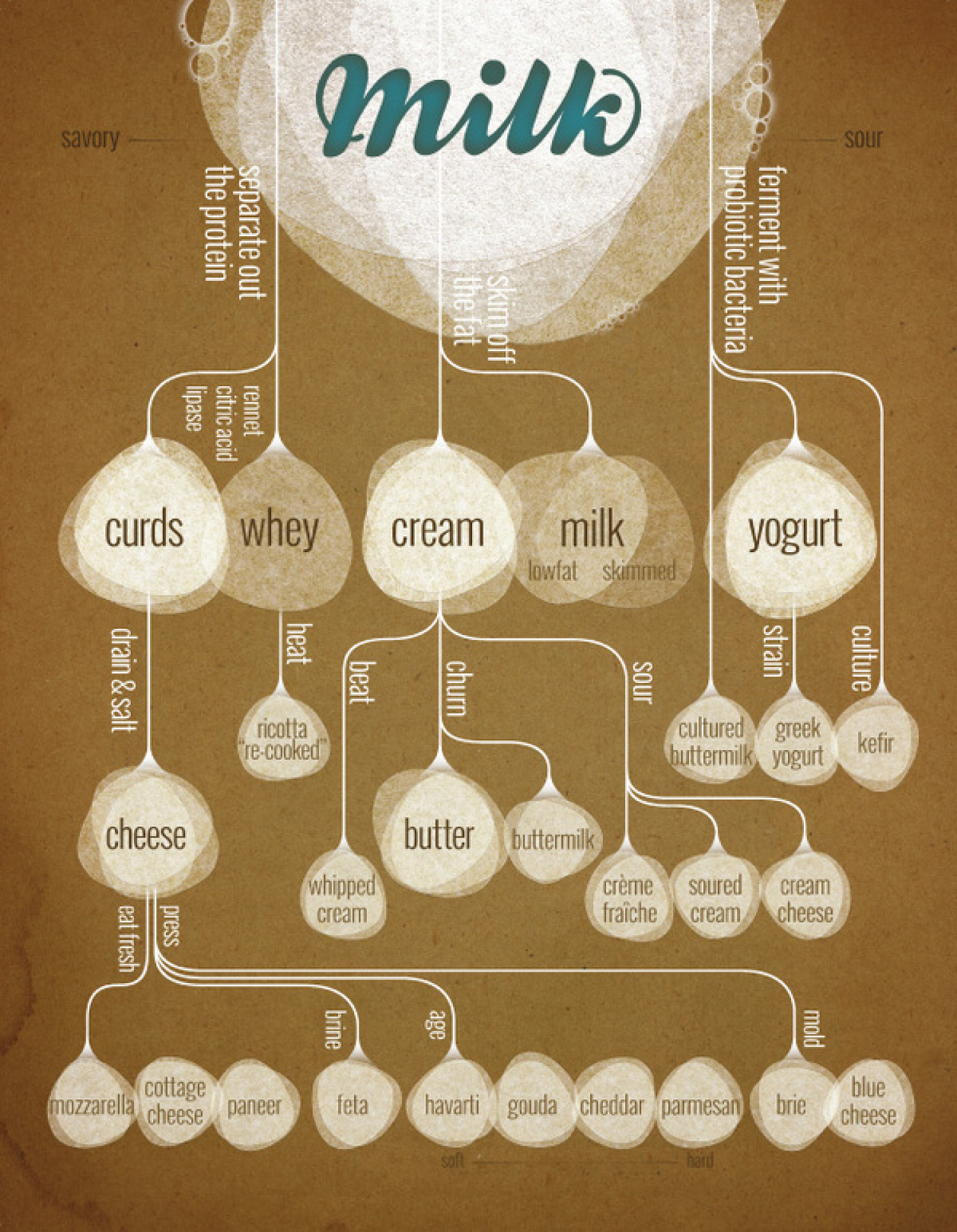 The Secret Lives of Milk