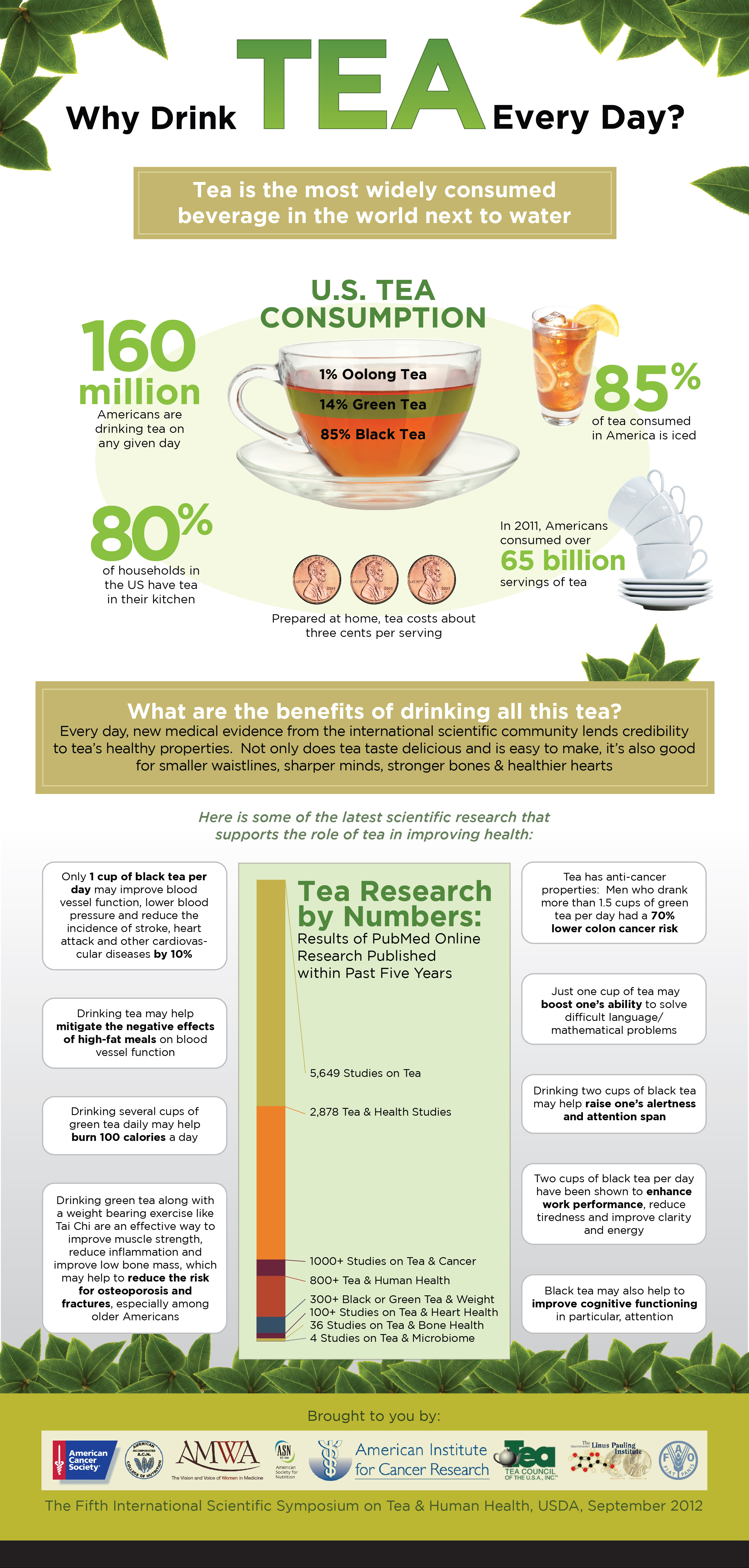 Why Drink Tea Every Day