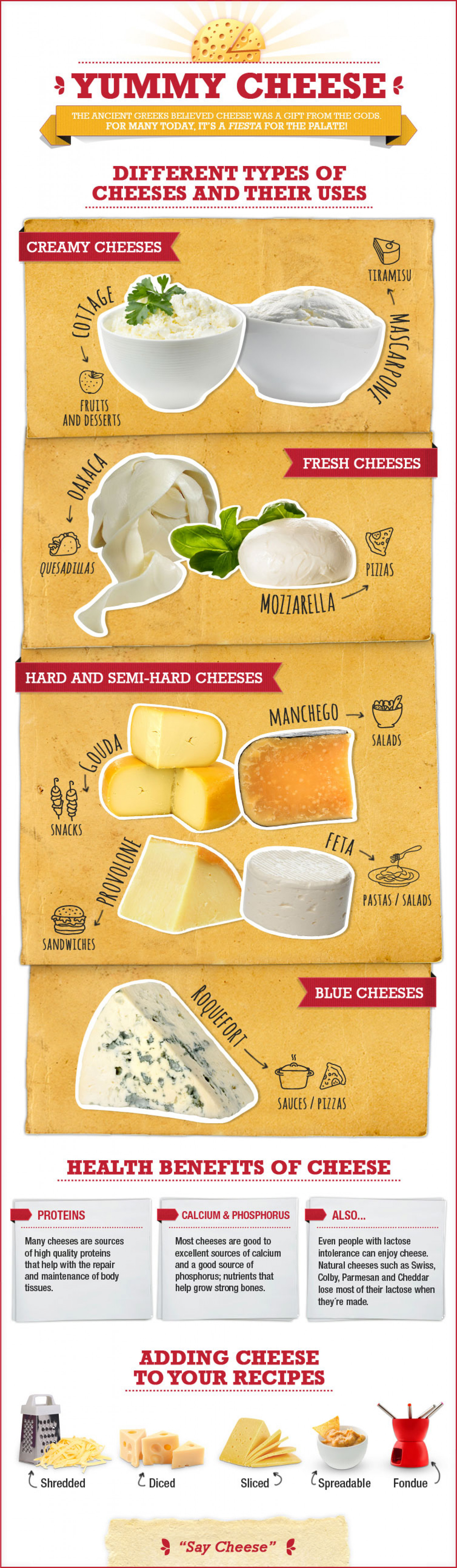 A Cheese Course the Basic Types and Uses of Cheese