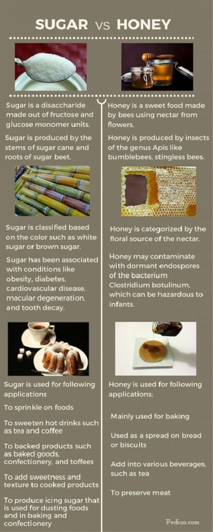 Difference Between Sugar and Honey