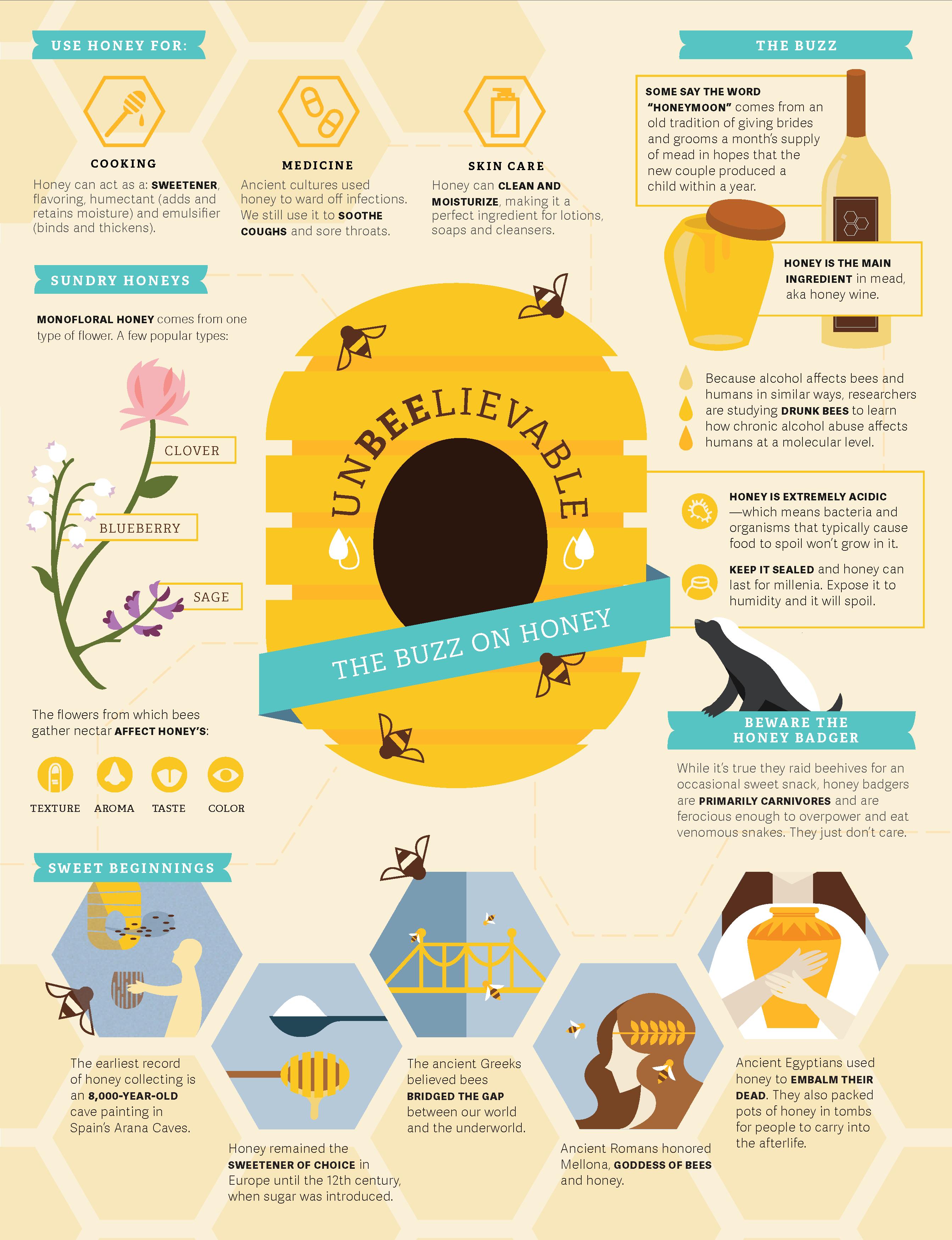 The Buzz on Honey