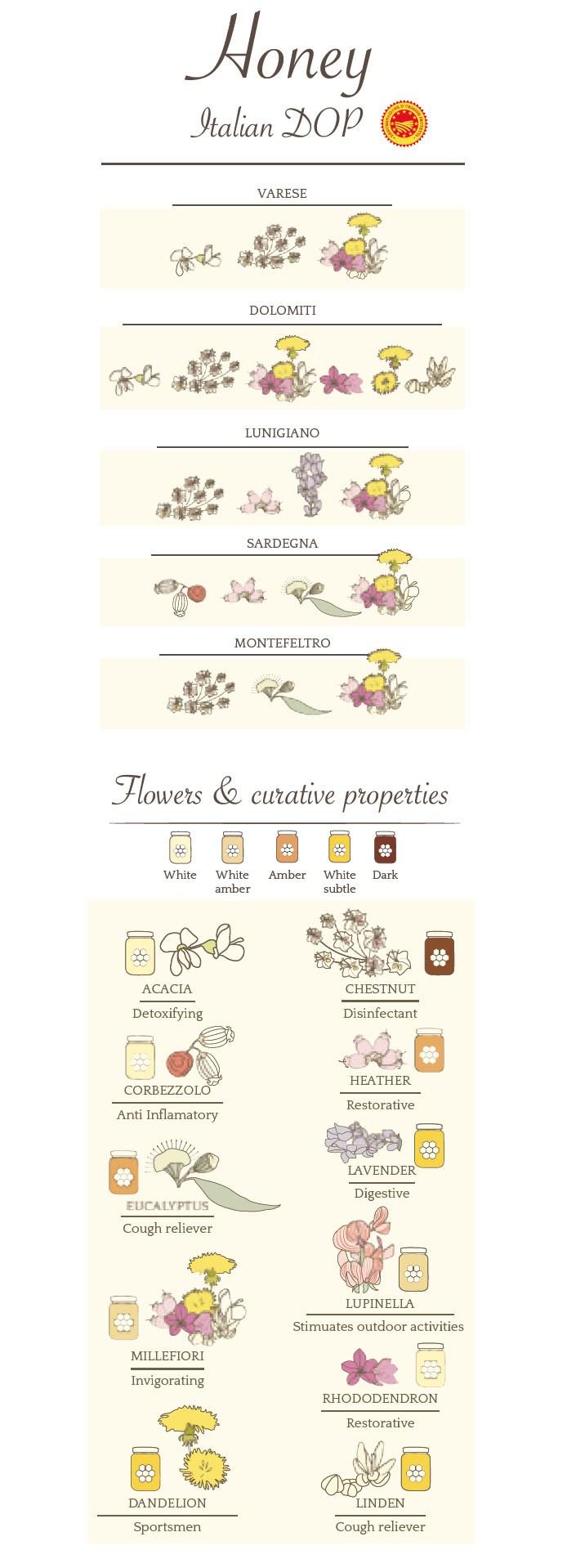 Types of Italian Honey You Need to Try