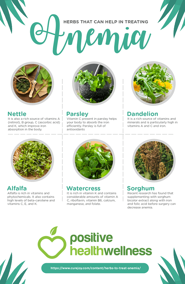 6 Herbs That Can Help in Treating Anemia