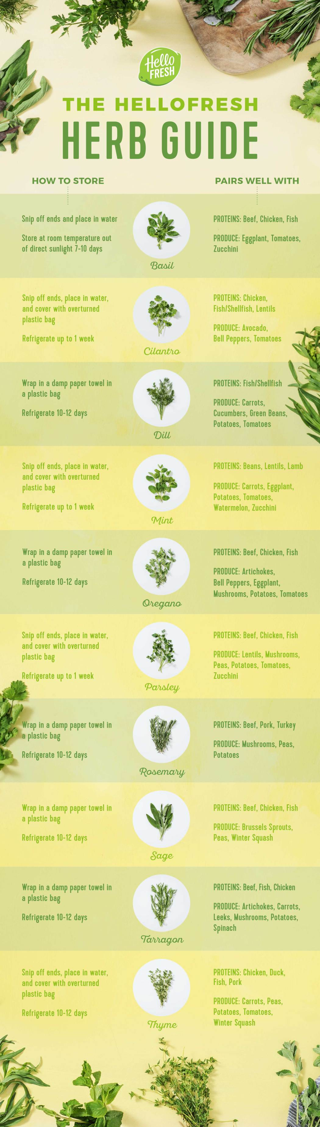 Guide to Storing Fresh Herbs