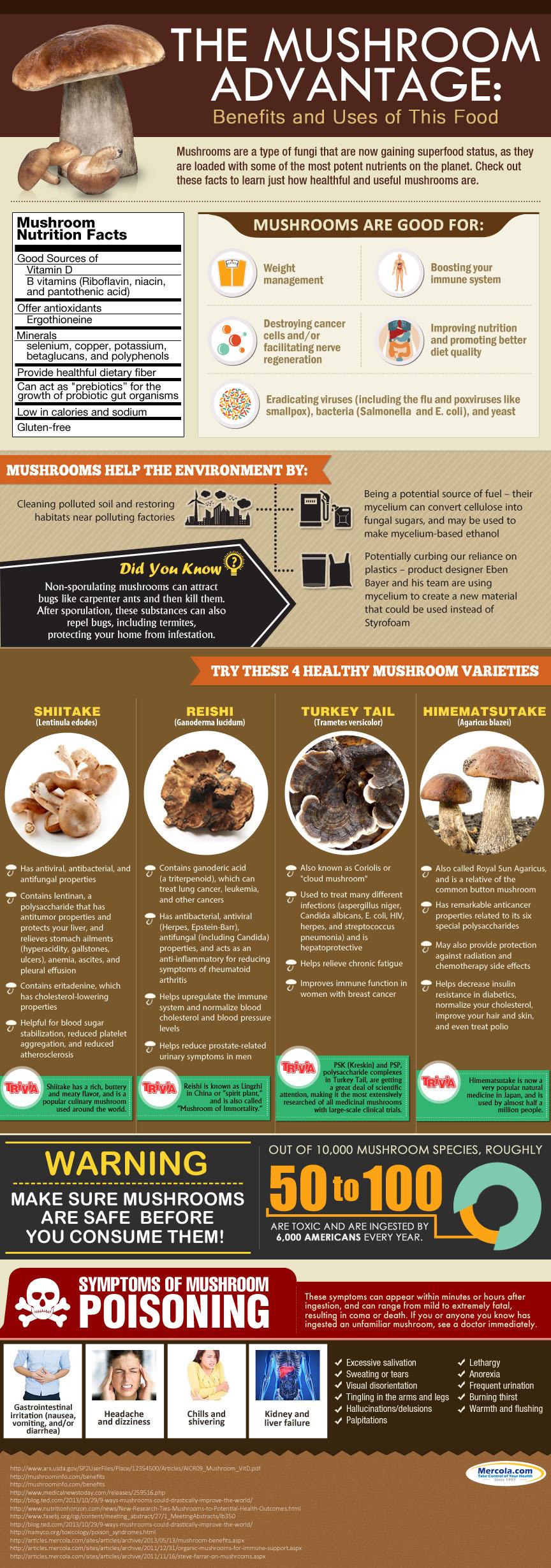The Mushroom Advantage