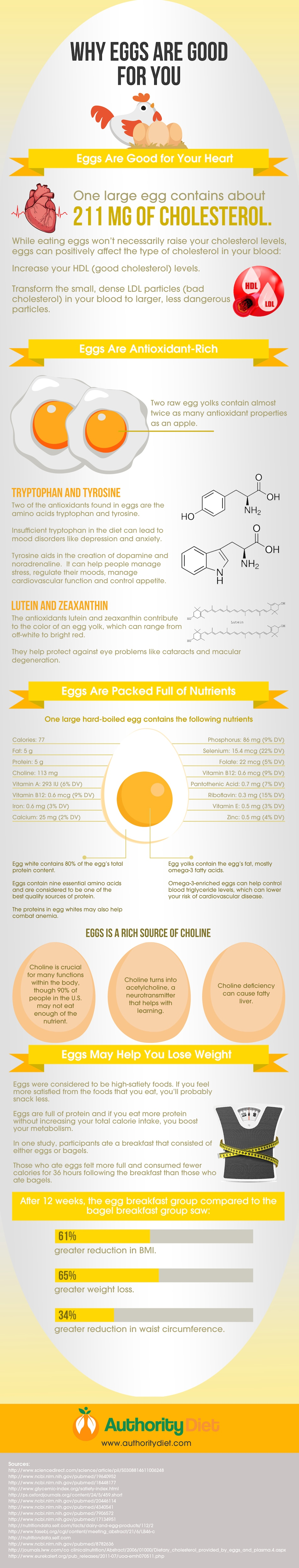 Are Eggs Good or Bad for You